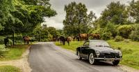 My '58 Karmann Ghia in The New Forest