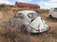 1965 beetle rescue