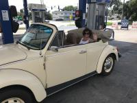 1975 VW Bug Convertible