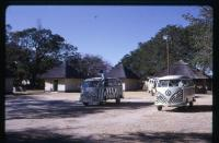 Zebra Buses at Wankie National Park, Africa