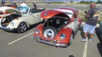 BUGS at the North Bay Air Cooled 2019 Meet at Vacaville VW, CA