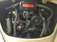 1967 Beetle Engine Compartment