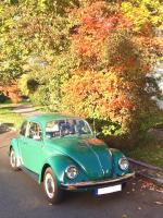 Mexican 1984 Beetle in October 2019