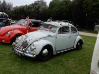ReVolks Beetles