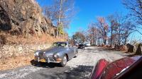 Bear Mountain Cruise