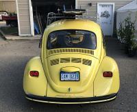 71' Bug