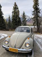 1969 Beetle Rolls 34,000 Miles