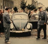 berlin beetle