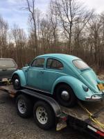 1961 Beetle 1