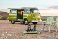 My 1977 Deluxe Westfalia with my Dogs