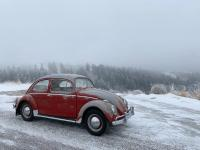 Original paint 1961 ruby red beetle