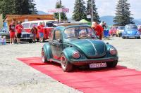 VW 1303S