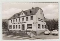 Squareback in Oberfell