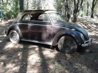 1964 Convertible Beetle