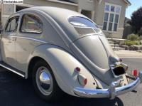 1955 bug with additional directional lights