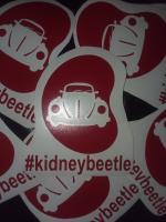 #Kidneybeetle