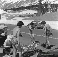 Bugs and Skiing