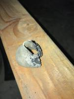 Wiring Harness Hinge Pillar Grommet