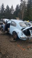 At the junkyard yesterday
