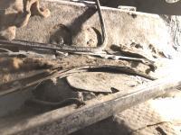 Rear body
