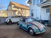 1965 Java beetle