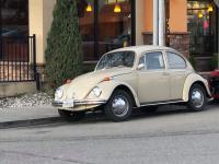 1970 tan standard beetle stolen in castro valley ca. USA 3/27/2020