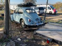 1966 Beetle