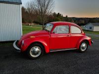1977 standard beetle
