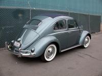 1955 Rag