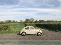 1955 Swedish Oval L275 light beige