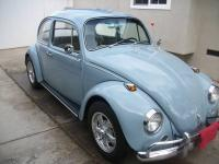Geezers New 67' Bug