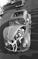 Car cram