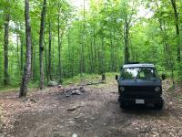 Van trip post COVID