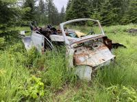 1967 convertible beetle