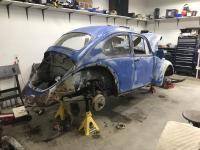68 ratted our bug