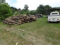 Wood 2020
