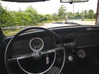 International beetle day drive