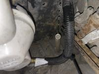 White hose