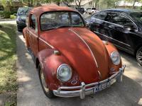1 owner bug 1966