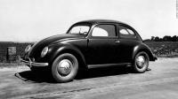 48/49 beetle