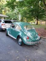 69 beetle peruvian green