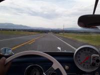Cruising in Montana