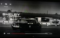 Shelby American,