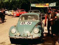 sporty beetle