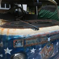 Windshield and window lip rust