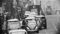 buses and beetles