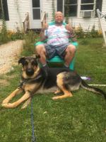 Canine co pilot