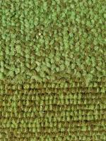 Carpet Comparison
