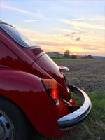 1984 Mexican Beetle in Fall Sunset