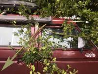 awning bracket branch stuck